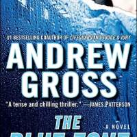 Book Review - The Blue Zone by Andrew Gross