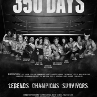 Movie Review: 350 Days