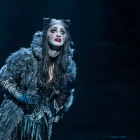 Review: Cats Comes to Philly